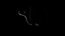logo-stn-n